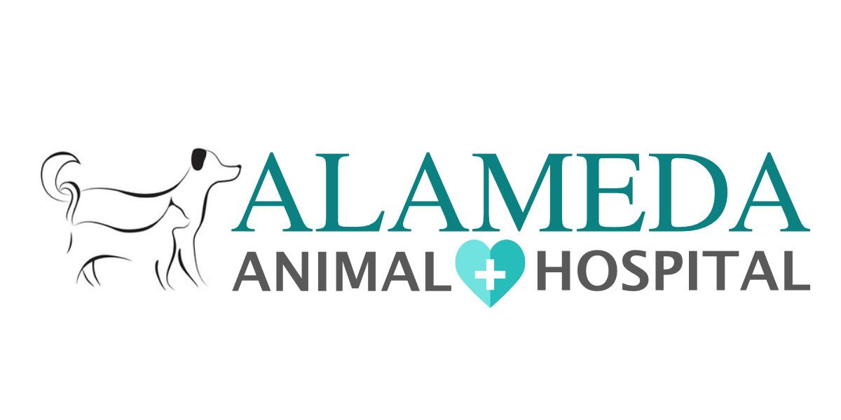 Veterinarian in Compton, CA | Alameda Animal Hospital